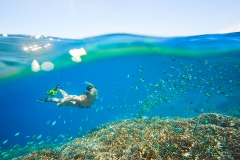 young woman at snorkeling in the tropical turquoise water