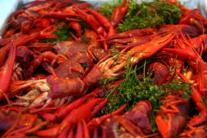 Cooked_crayfish_with_dill-1024x683