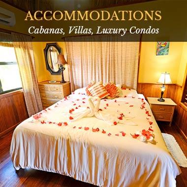 Accommodations - Captain Morgan's Retreat. Belize